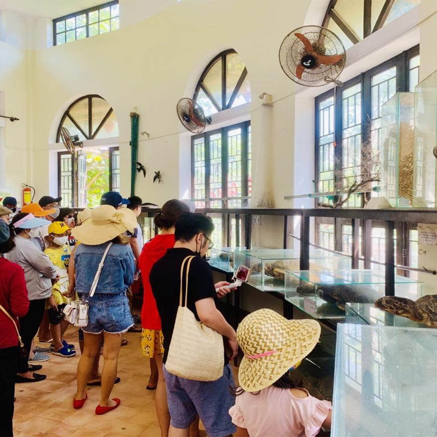 Bảo tàng Cù Lao Chàm