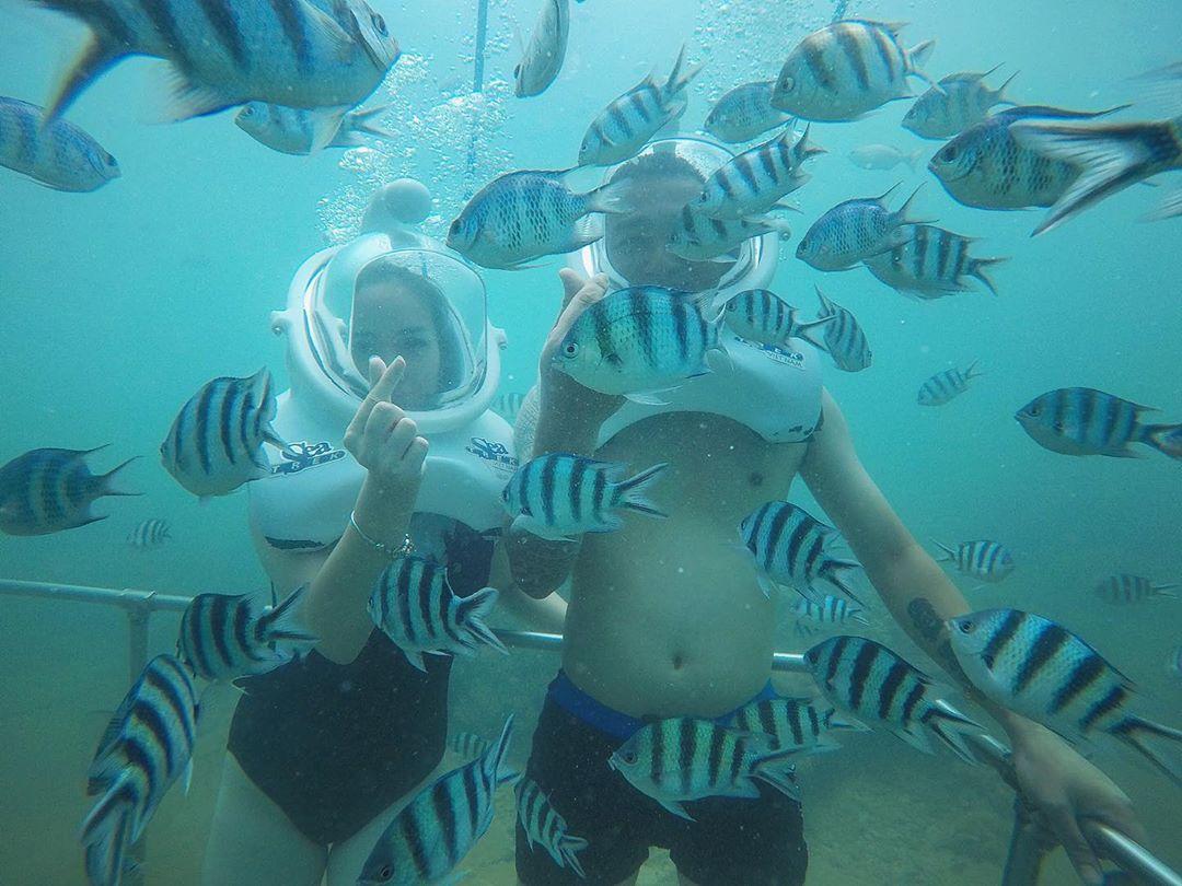 Đi bộ dưới biển tận tay cho các loài cá ăn tại Bãi Xếp