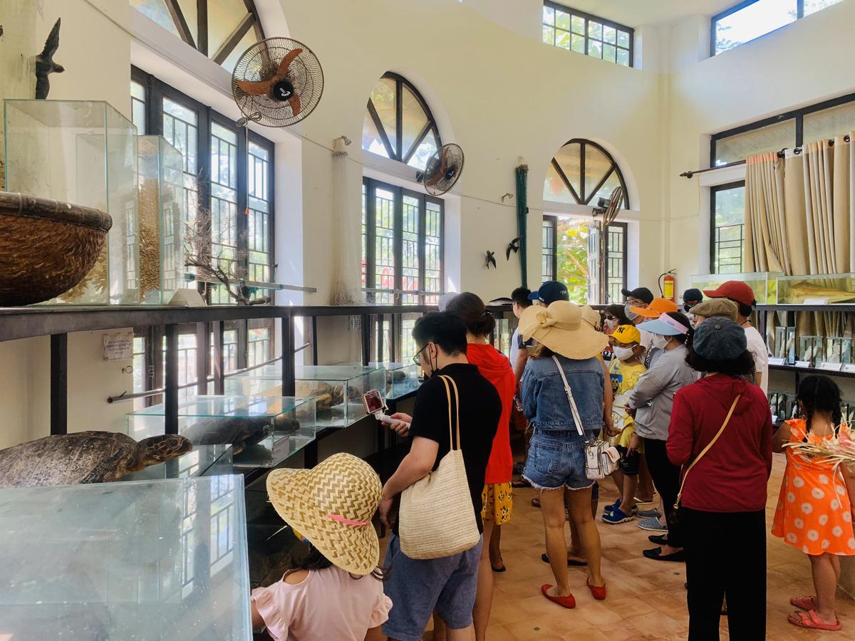 Tour Cù Lao Chàm